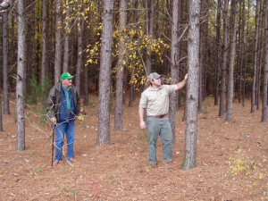 Cover photo for Forestry Meeting - February 11